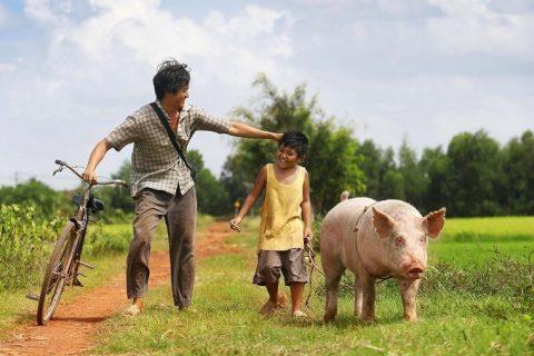 Vũ Ngọc Đãng làm phim về tình cha con nơi quê nghèo