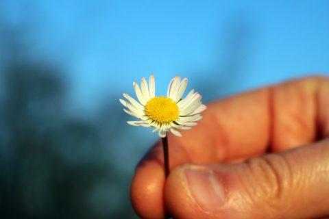 3 lời nói dối tự nói với bản thân để xoa dịu cảm giác bất lực