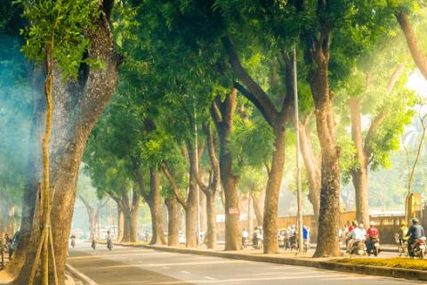 8 lý do khiến lòng ta luôn mong ngóng mùa thu Hà Nội - Nào Cùng Đi