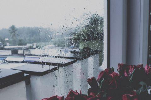 Sài Gòn, những ngày mưa, em và anh đã quên nhau chưa?