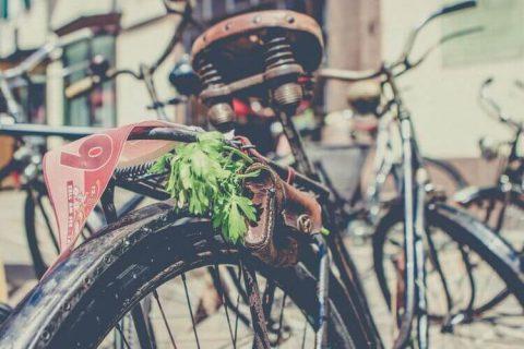 Cùng tìm hiểu xe đạp xưa và nay thay đổi như thế nào