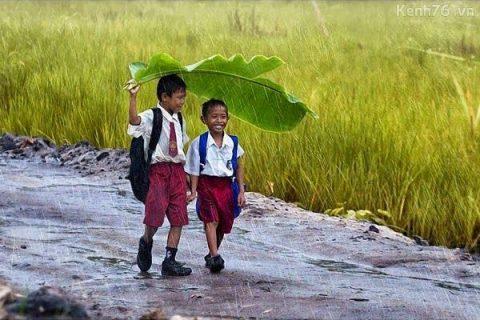 Hình ảnh đẹp về tuổi thơ ấu | Hình nền sắc màu tuổi thơ | Tình bạn, Hình ảnh,  Cuộc sống