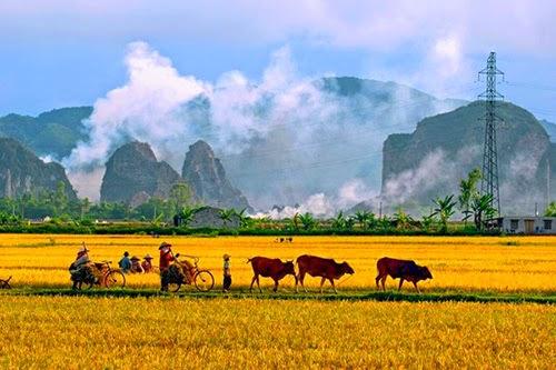 KHÓI LAM CHIỀU | Những Ngày Xưa Thân Ái