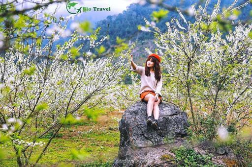 Du lịch mộc châu tháng giêng - Ngắm trọn vẻ đẹp Tây Bắc mùa xuân