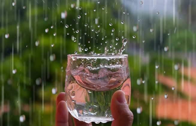 Dùng nước mưa để ăn uống có thực sự tốt như bạn nghĩ? -