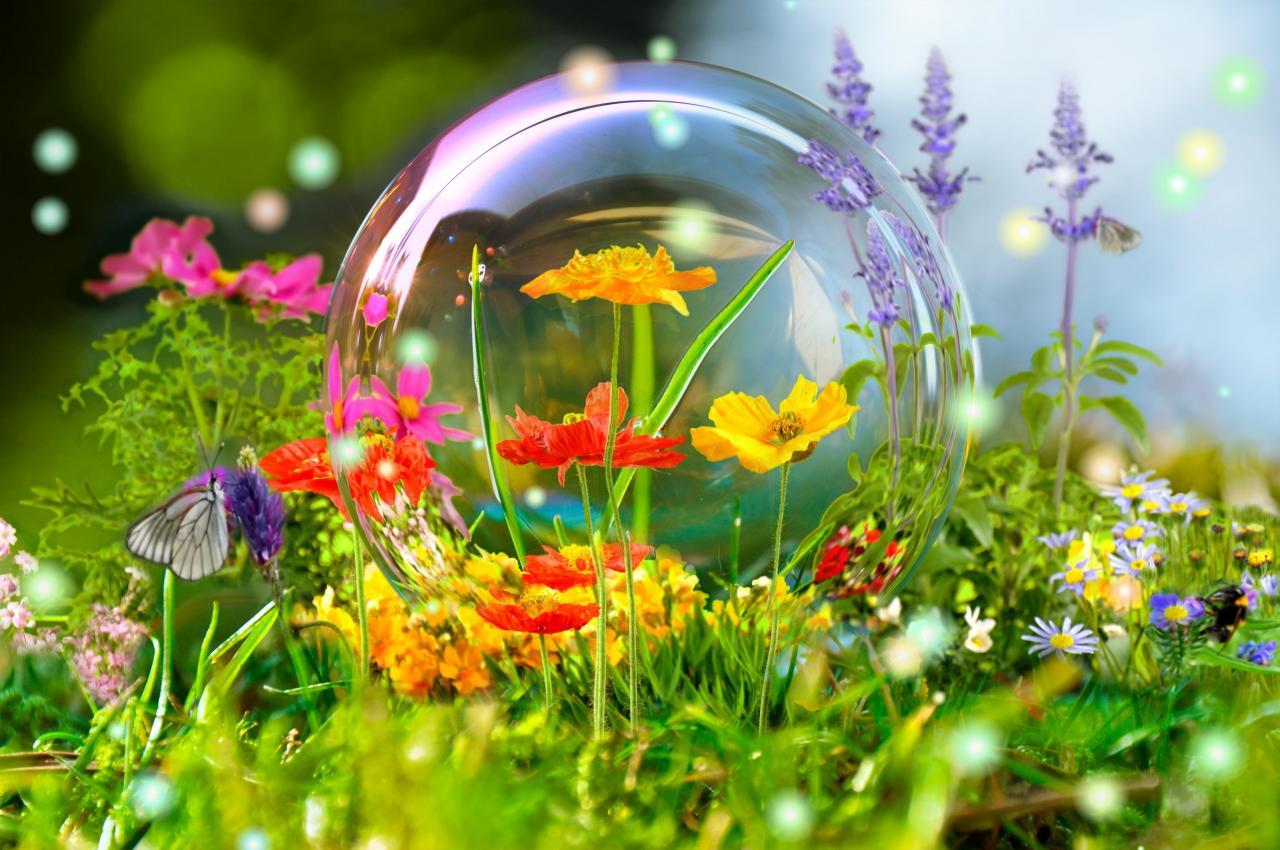 Hình ảnh mùa xuân – Tổng hợp những hình ảnh mùa xuân đẹp nhất