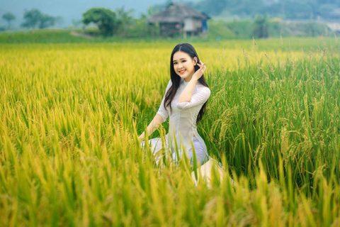 Á khôi Sinh viên Việt Nam khoe nét xuân thì bên đồng lúa