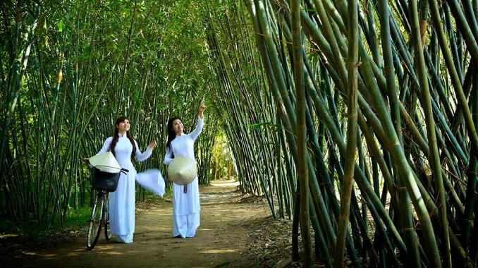 Biểu cảm về cây tre Việt Nam - Theki.vn