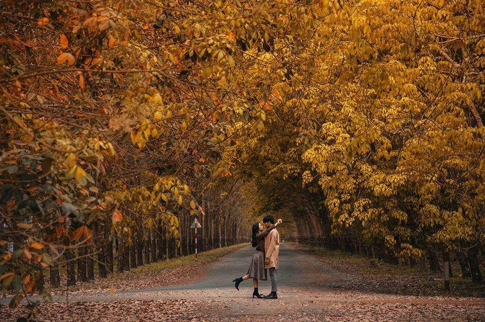 TOP hình ảnh mùa thu đẹp lãng mạn - lâng lâng cảm xúc giao mùa