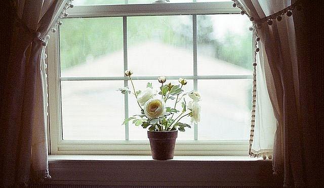 Khung cửa sổ thân thương -