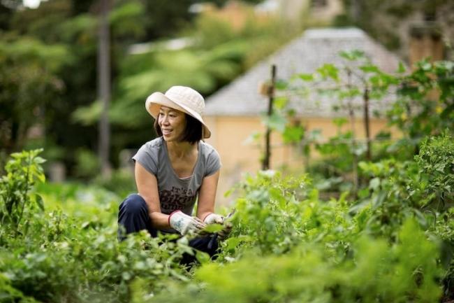 Làm vườn hàng ngày có thể giúp bạn mạnh khỏe - VnExpress Sức khỏe