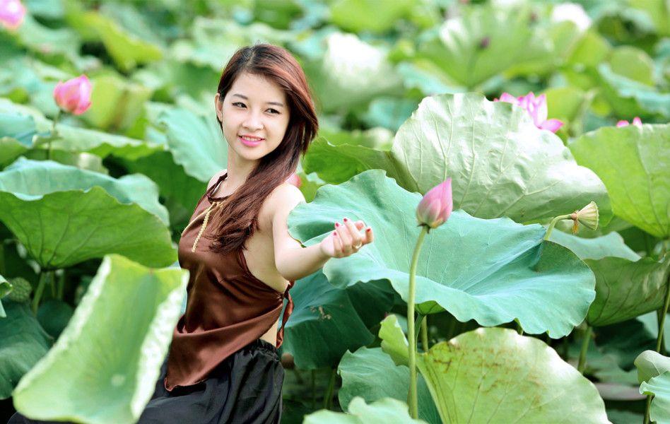 hình nền Thiếu nữ bên hoa sen tuyệt đẹp, hình nền HD | Hình ảnh, Chụp ảnh,  Hoa sen
