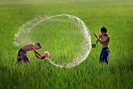Tuổi thơ bên kia rào - Báo Khánh Hòa điện tử