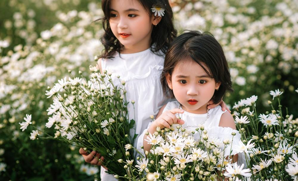 """Đánh bại tất cả các bộ ảnh khác, 2 chị em soán ngôi """"công chúa mùa cúc họa  mi"""" năm nay vì quá xinh"""